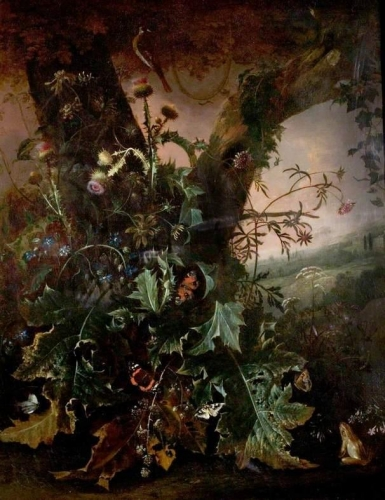 Still Life with Frog and Goldfinch also known as Thistles and Butterflies).jpg