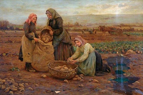The Potato Pickers.jpg