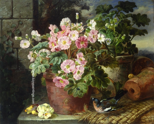 Primula in a Pot and a Chaffinch.jpg