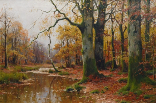 Creek in an Autumnal Forest.jpg