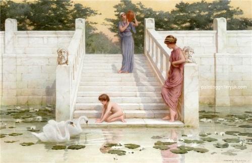 Admiring the Swans.jpg
