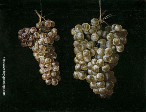 Bodegón con dos racimos de uvas.jpg