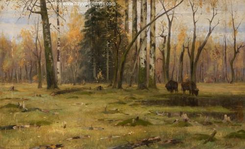 Bialowieza Forest.jpg
