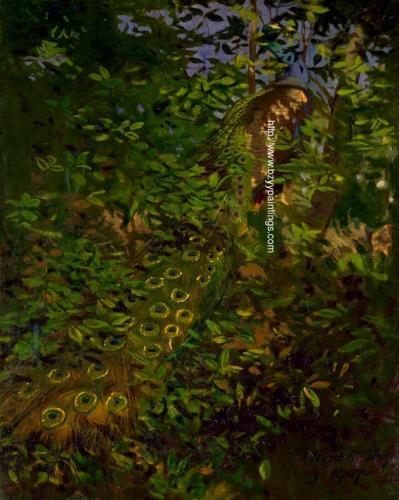 Peacock in the Woods.jpg