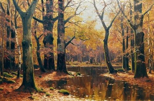 Forest landscape with pond.jpg