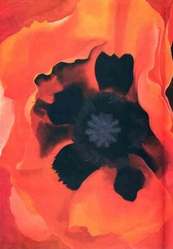 Poppy 2_pro_21117_.jpg