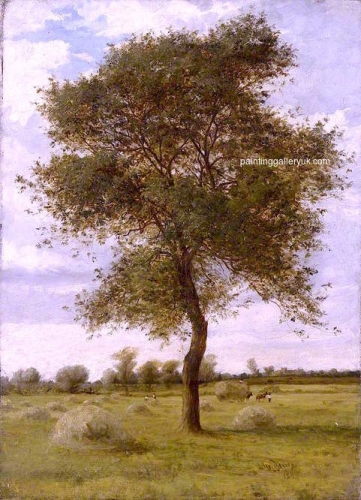 Study of an Ash Tree in Summer.jpg