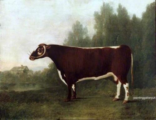 Garrick: A Bullock.jpg